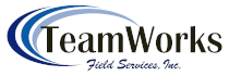 TeamWorks Consulting Inc.